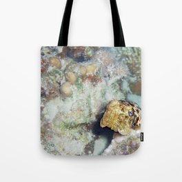 Baby Cuttlefish and Hard Coral Tote Bag