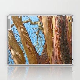 MADRONA TREE BY THE SEA Laptop & iPad Skin