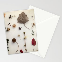 Botanical Party 007 Stationery Cards