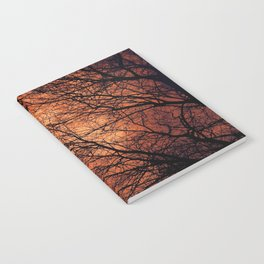 The Enchanted Forest 2 Notebook