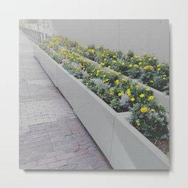 FlowerBox Metal Print
