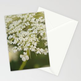 The Queen's Lace Stationery Cards