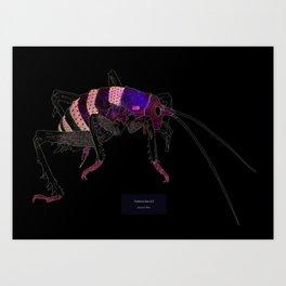 Deinasolarcrid Art Print