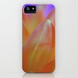 Dreamy Orange Petals iPhone Case