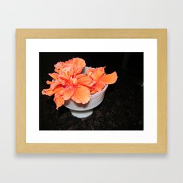 Flower: Hibiscus Framed Art Print