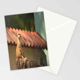 Meerkat Funny Observer #decor #society6 Stationery Cards