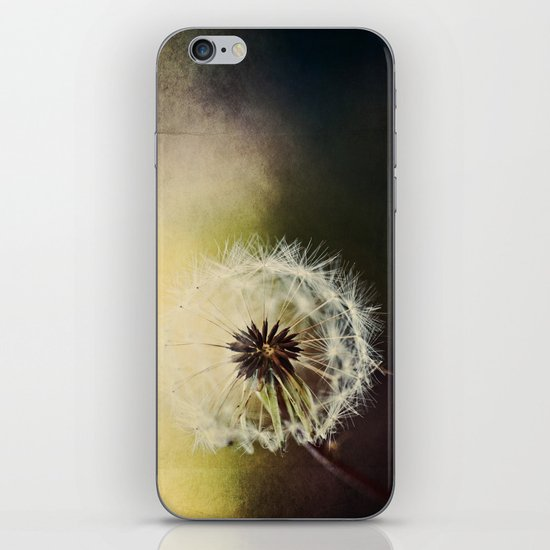 Grungy Wisher iPhone & iPod Skin