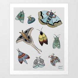 Moths Art Print