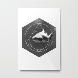 Toothy Metal Print