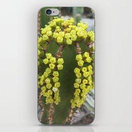 Cactus II iPhone Skin
