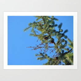 Pining for You  Art Print