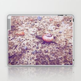 Escargot Laptop & iPad Skin