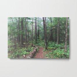 Pfeiffer Arboretum II Metal Print