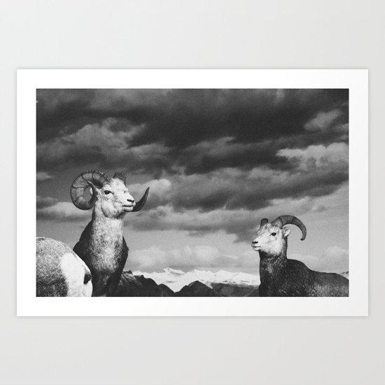 rams | fig. 01 | odd ram out Art Print