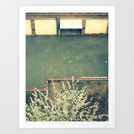 back yard. Art Print