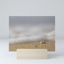 Pretty Peach Seashell on the Seashore Mini Art Print