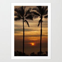 Watching The Setting Sun Art Print