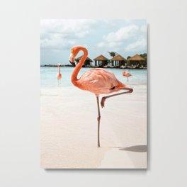 Travel Photography Art Print | Pink Flamingo Beach Photo | Aruba Island Tropical Summer Bird  Metal Print