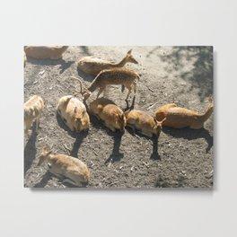 Be a Deer Metal Print