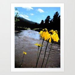 Be My Flower Art Print