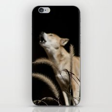 Howling to the Moon iPhone & iPod Skin