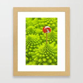 Romanesco Lollipop Framed Art Print