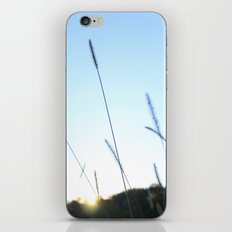 Reach for the Sky iPhone Skin