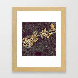 Sakura R1 Framed Art Print