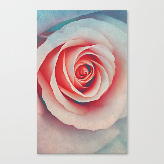 Romantic rose(7). Canvas Print