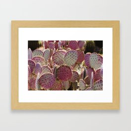 Purple Cactus Framed Art Print