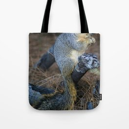Mr. Squirrel! Tote Bag