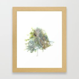Where the sea sings to the trees - 11 Framed Art Print