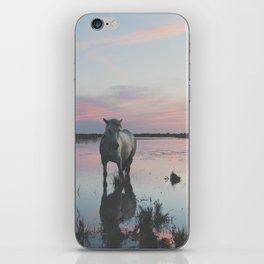 Camargue Horses IV iPhone Skin