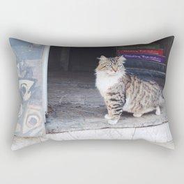 Cats of Istanbul II Rectangular Pillow