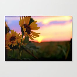 And The Sun Will Shine Canvas Print