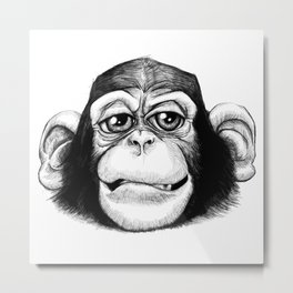 Cheeky baby chimp black and white. Metal Print