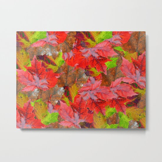 Autumn Fallen Leaves Metal Print