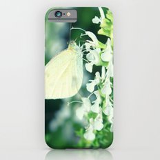 White Cabbage Butterfly On A Flower, Pieris rapae iPhone 6s Slim Case
