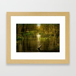 Fantasy forest landscape with water Framed Art Print