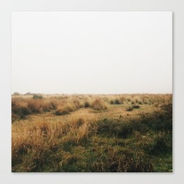 Fields Of Canvas Print