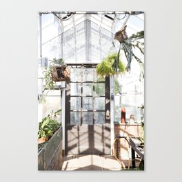Greenhouse Fern Room Canvas Print