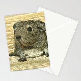 Metal Guinea pig Stationery Cards
