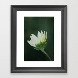 White Flower Framed Art Print