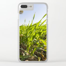 green grass Clear iPhone Case