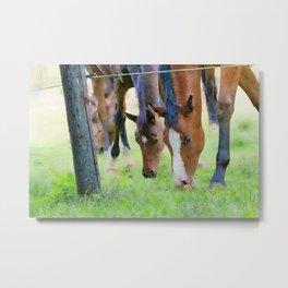 Horses watercolor painting  Metal Print