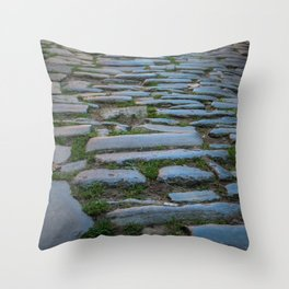 Cobblestones And Grass Throw Pillow