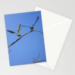 Birds from Pantanal Arara canindé, juntos é bem melhor Stationery Cards