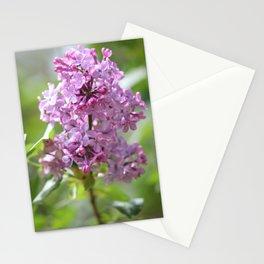 Lilac Lady Stationery Cards