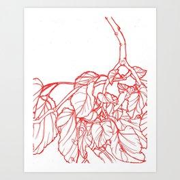 Red Branch Art Print