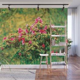 Azalea blooming Wall Mural